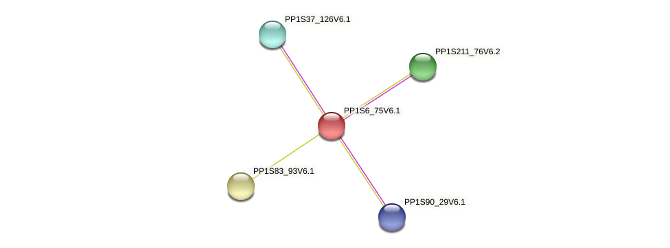 PP1S6_75V6.1 protein (Physcomitrella patens) - STRING interaction network