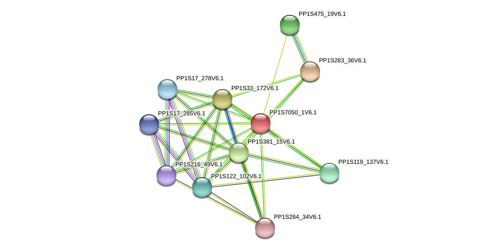 PP1S7050_1V6.1 protein (Physcomitrella patens) - STRING interaction network