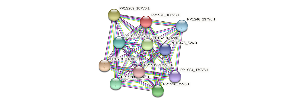 PP1S70_106V6.1 protein (Physcomitrella patens) - STRING interaction network