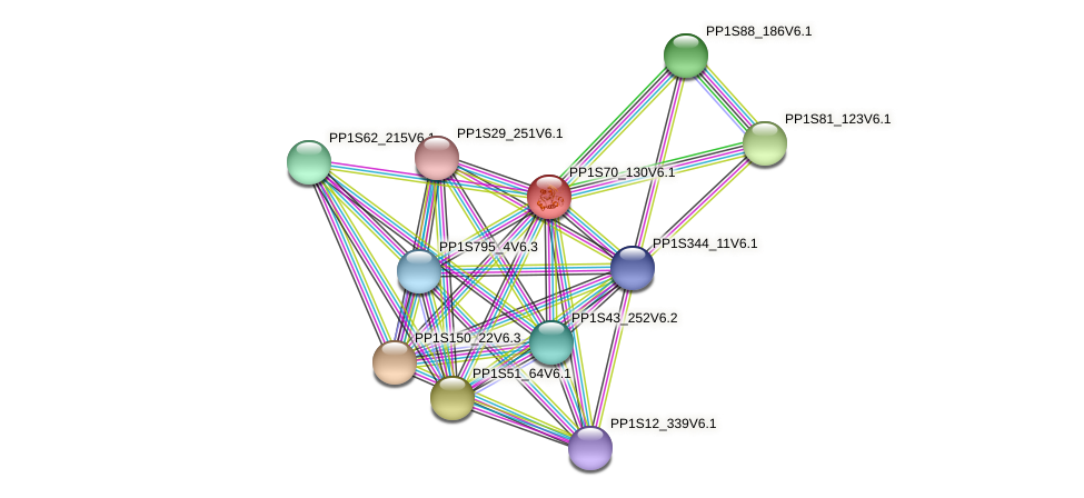 ArfA15 protein (Physcomitrella patens) - STRING interaction network