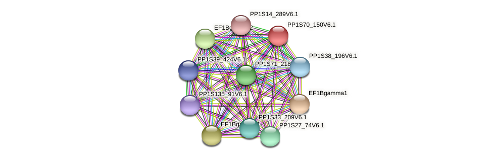 PP1S70_150V6.1 protein (Physcomitrella patens) - STRING interaction network