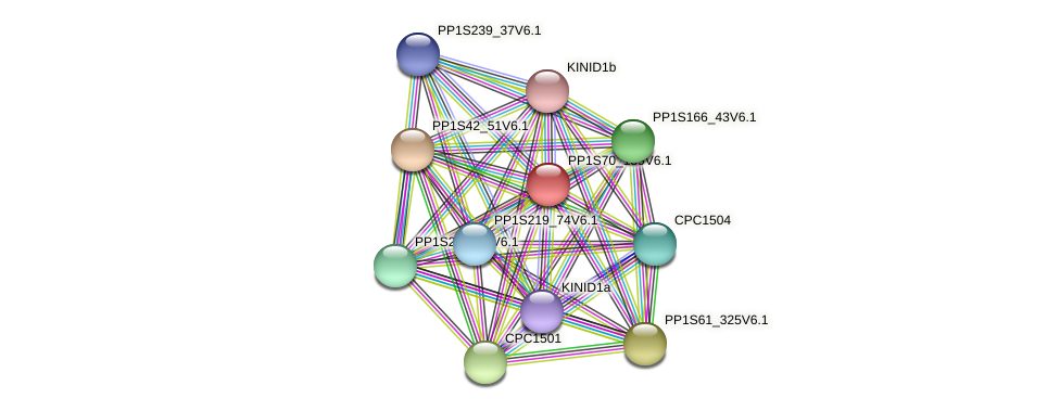 PP1S70_159V6.1 protein (Physcomitrella patens) - STRING interaction network