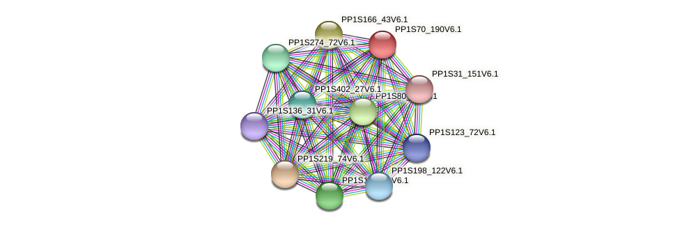 PP1S70_190V6.1 protein (Physcomitrella patens) - STRING interaction network