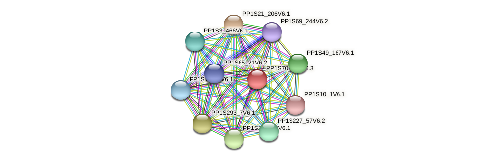PP1S70_225V6.1 protein (Physcomitrella patens) - STRING interaction network