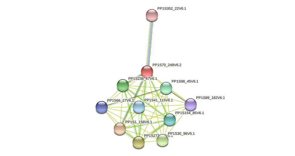 PP1S70_249V6.2 protein (Physcomitrella patens) - STRING interaction network