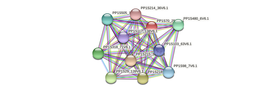 PP1S70_254V6.1 protein (Physcomitrella patens) - STRING interaction network