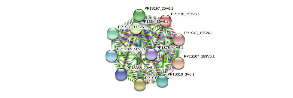 PP1S70_257V6.1 protein (Physcomitrella patens) - STRING interaction network