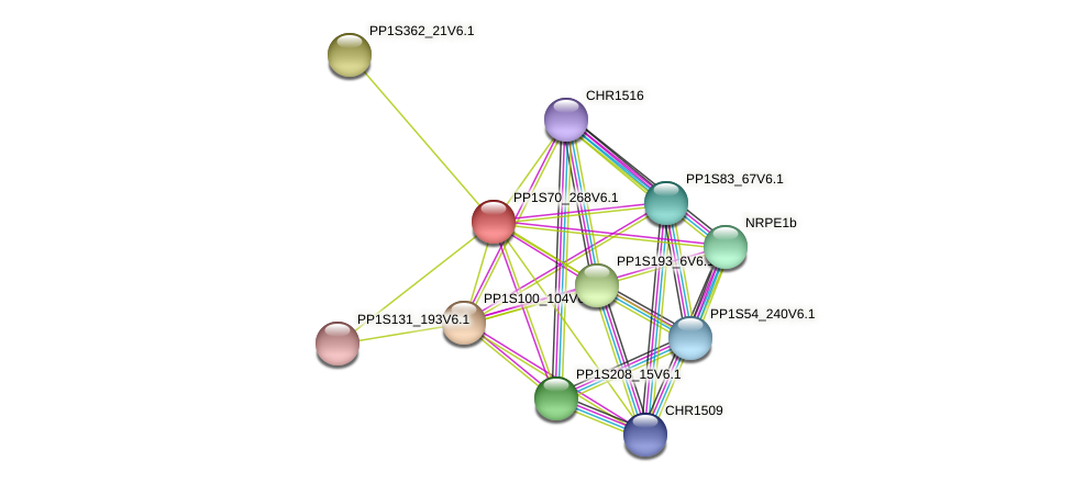 PP1S70_268V6.1 protein (Physcomitrella patens) - STRING interaction network