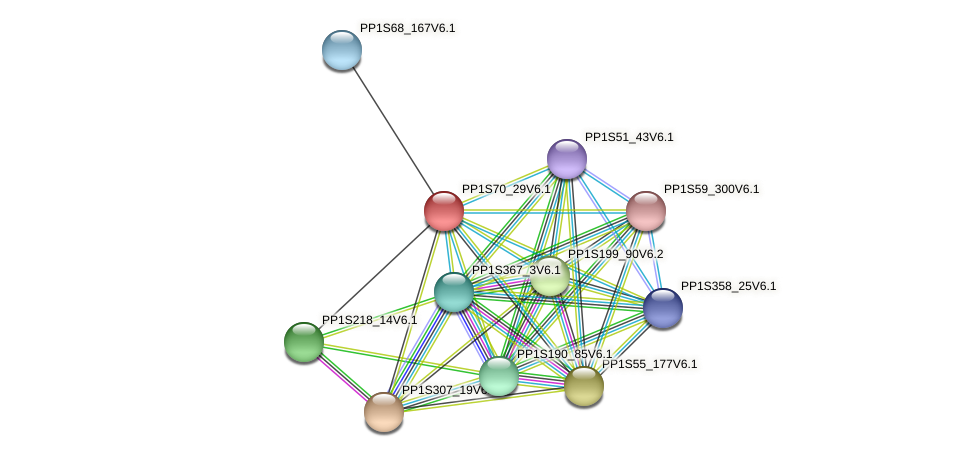 PP1S70_29V6.1 protein (Physcomitrella patens) - STRING interaction network