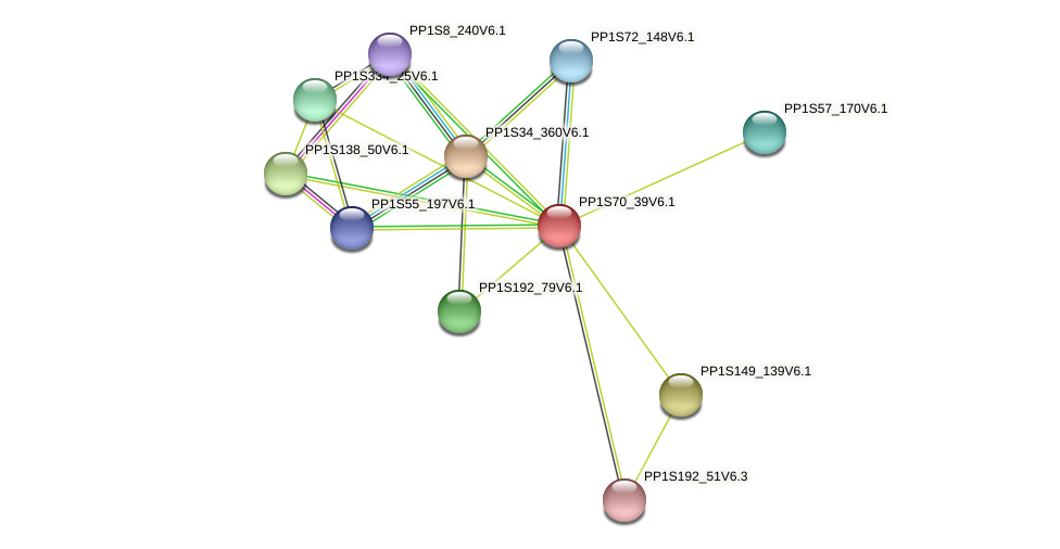 PP1S70_39V6.1 protein (Physcomitrella patens) - STRING interaction network