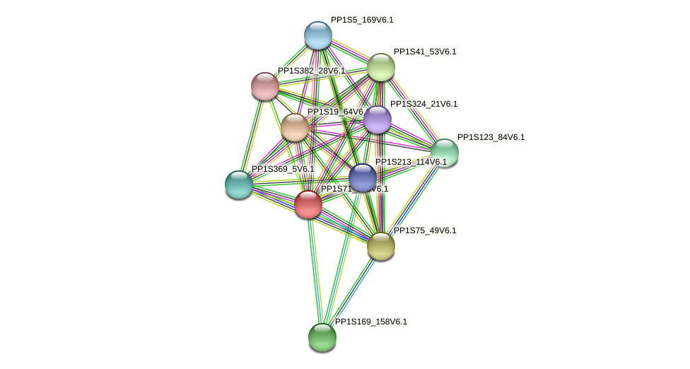 PP1S71_166V6.1 protein (Physcomitrella patens) - STRING interaction network