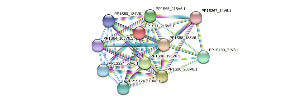 PP1S71_215V6.1 protein (Physcomitrella patens) - STRING interaction network