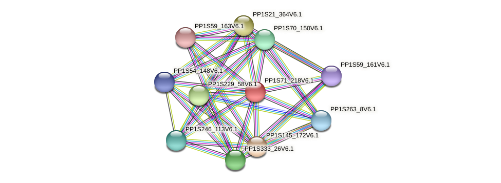 PP1S71_218V6.1 protein (Physcomitrella patens) - STRING interaction network