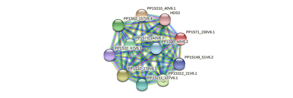 PP1S71_230V6.1 protein (Physcomitrella patens) - STRING interaction network