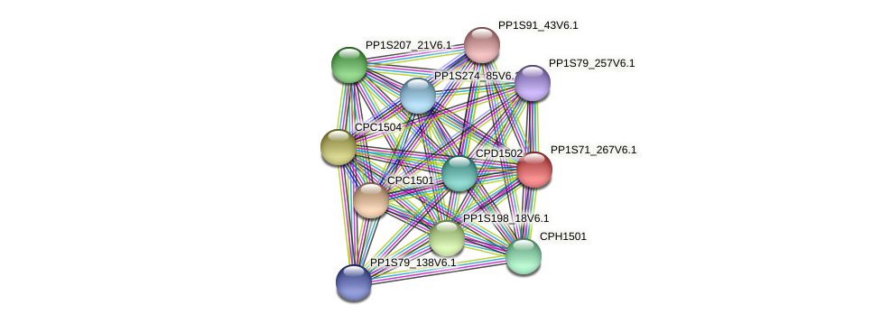 PP1S71_267V6.1 protein (Physcomitrella patens) - STRING interaction network