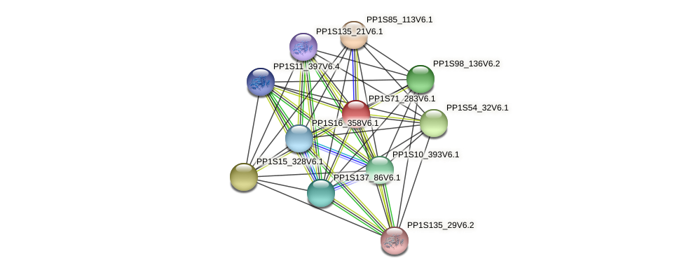 PP1S71_283V6.1 protein (Physcomitrella patens) - STRING interaction network