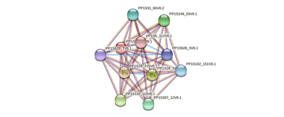 PP1S71_77V6.1 protein (Physcomitrella patens) - STRING interaction network