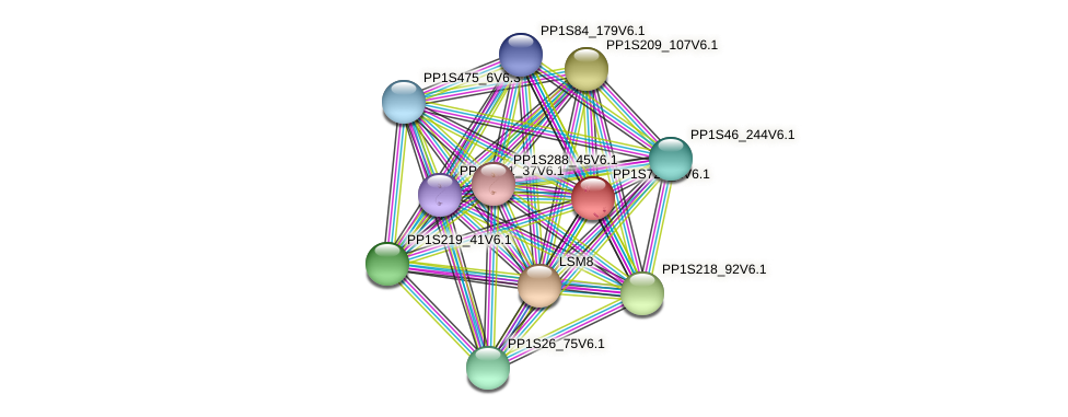 PP1S726_1V6.1 protein (Physcomitrella patens) - STRING interaction network