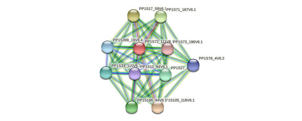 PP1S72_111V6.1 protein (Physcomitrella patens) - STRING interaction network