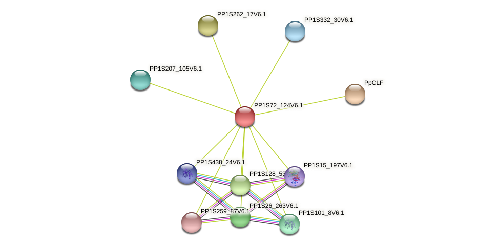 PP1S72_124V6.1 protein (Physcomitrella patens) - STRING interaction network