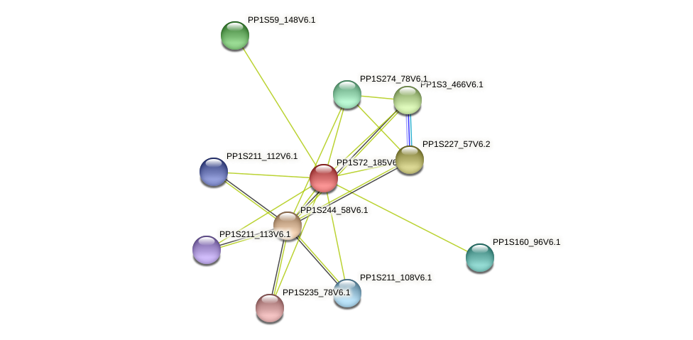 PP1S72_185V6.1 protein (Physcomitrella patens) - STRING interaction network