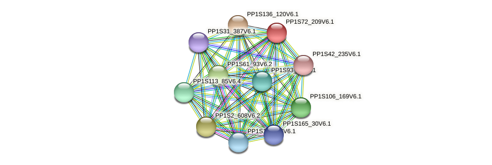 PP1S72_209V6.1 protein (Physcomitrella patens) - STRING interaction network