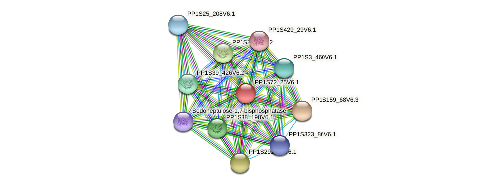 PP1S72_25V6.1 protein (Physcomitrella patens) - STRING interaction network