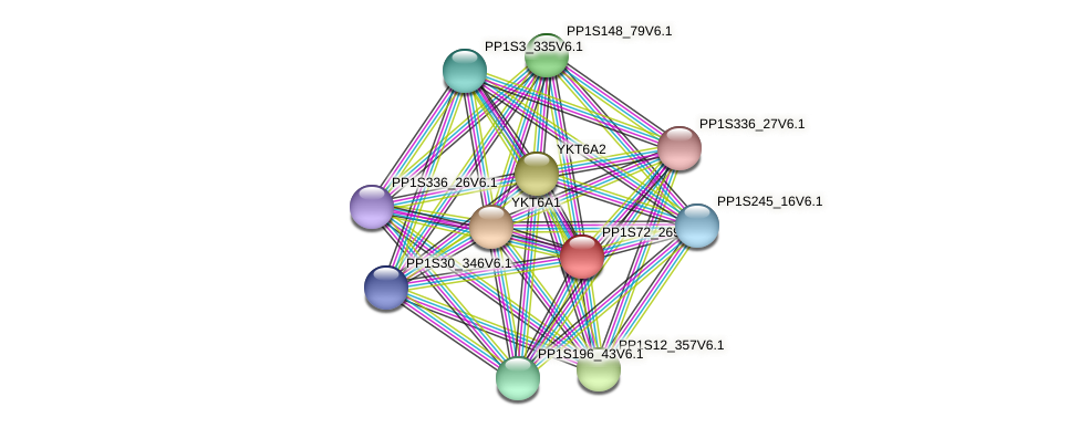 PP1S72_269V6.1 protein (Physcomitrella patens) - STRING interaction network