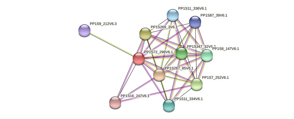 PP1S72_296V6.1 protein (Physcomitrella patens) - STRING interaction network