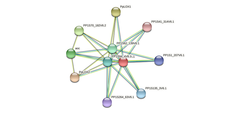 HPL1 protein (Physcomitrella patens) - STRING interaction network