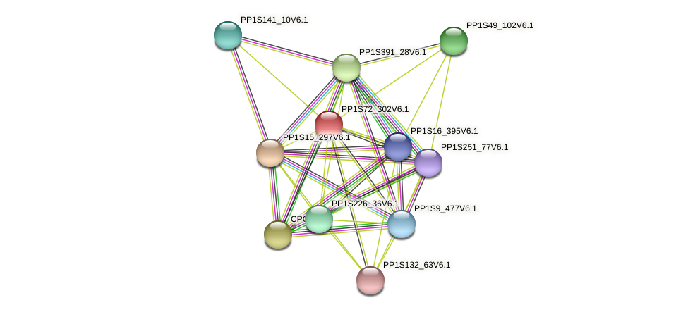 PP1S72_302V6.1 protein (Physcomitrella patens) - STRING interaction network