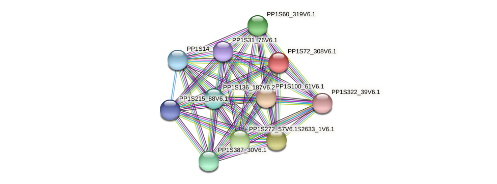 PP1S72_308V6.1 protein (Physcomitrella patens) - STRING interaction network