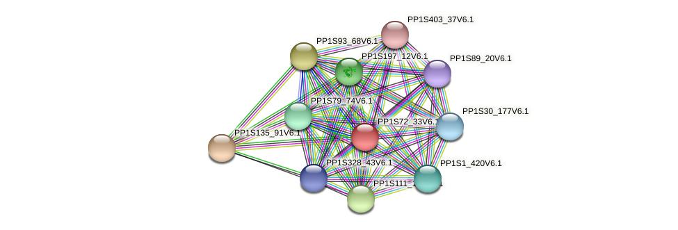 PP1S72_33V6.1 protein (Physcomitrella patens) - STRING interaction network