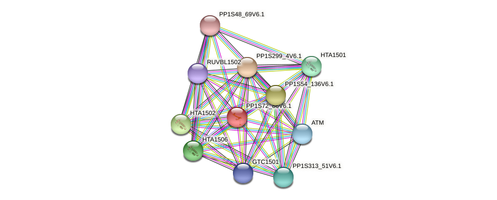 PP1S72_86V6.1 protein (Physcomitrella patens) - STRING interaction network