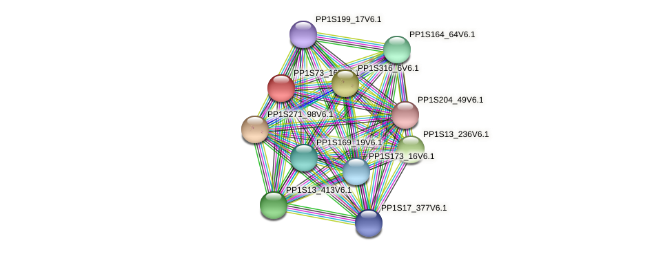 PP1S73_165V6.1 protein (Physcomitrella patens) - STRING interaction network