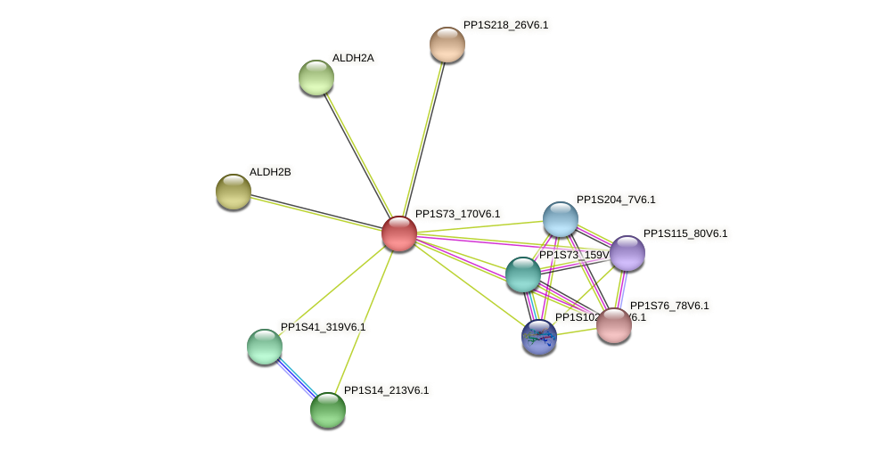 PP1S73_170V6.1 protein (Physcomitrella patens) - STRING interaction network