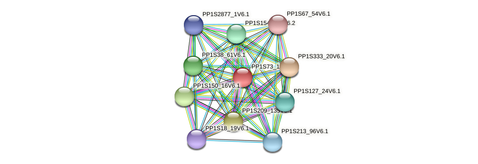 PP1S73_191V6.1 protein (Physcomitrella patens) - STRING interaction network
