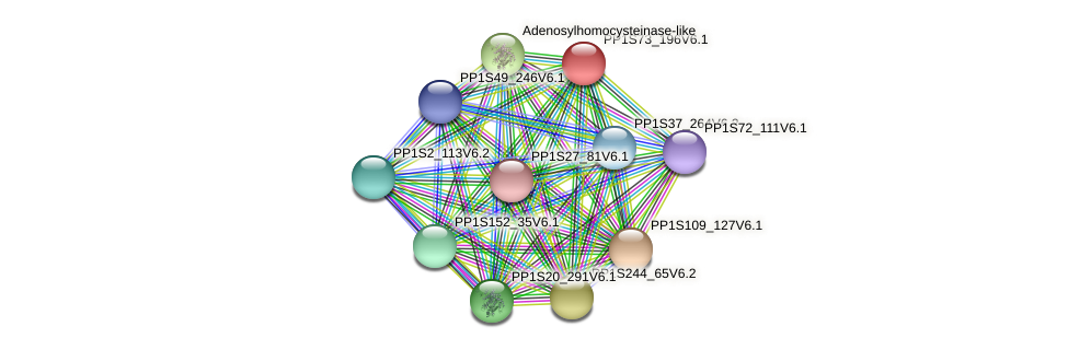 PP1S73_196V6.1 protein (Physcomitrella patens) - STRING interaction network