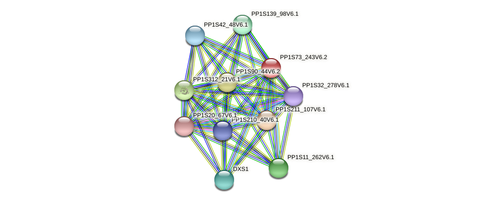 PP1S73_243V6.2 protein (Physcomitrella patens) - STRING interaction network