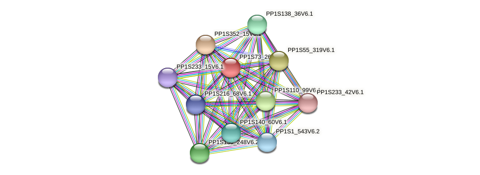 PP1S73_26V6.1 protein (Physcomitrella patens) - STRING interaction network