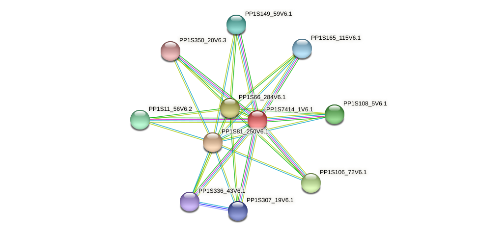 PP1S7414_1V6.1 protein (Physcomitrella patens) - STRING interaction network