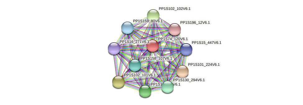PP1S74_120V6.1 protein (Physcomitrella patens) - STRING interaction network