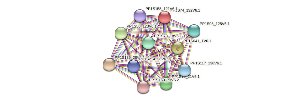 PP1S74_132V6.1 protein (Physcomitrella patens) - STRING interaction network