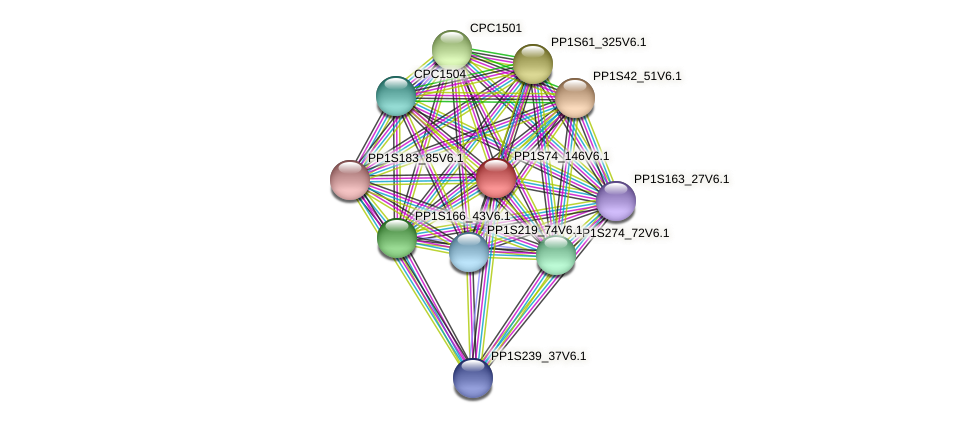 PP1S74_146V6.1 protein (Physcomitrella patens) - STRING interaction network