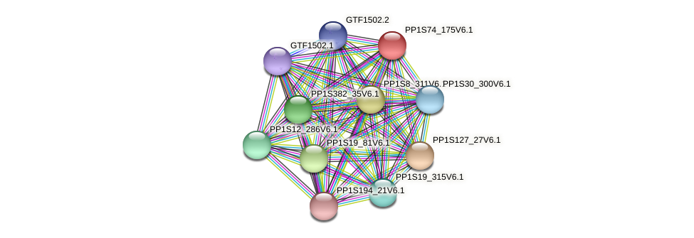 PP1S74_175V6.1 protein (Physcomitrella patens) - STRING interaction network