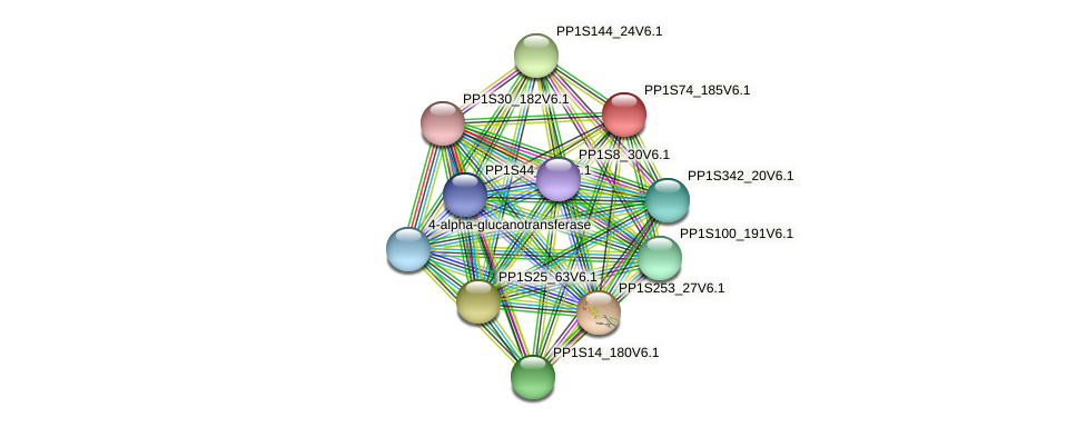 PP1S74_185V6.1 protein (Physcomitrella patens) - STRING interaction network