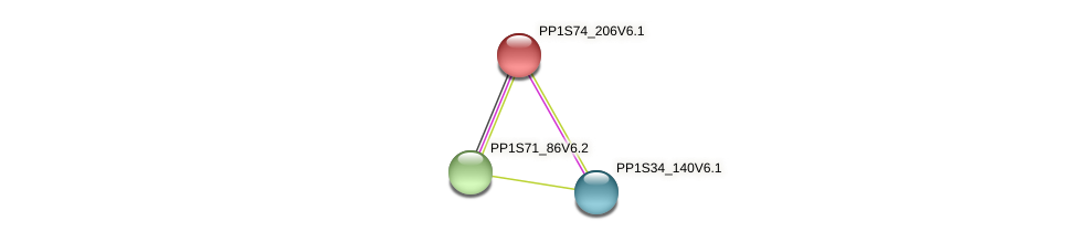 PP1S74_206V6.1 protein (Physcomitrella patens) - STRING interaction network