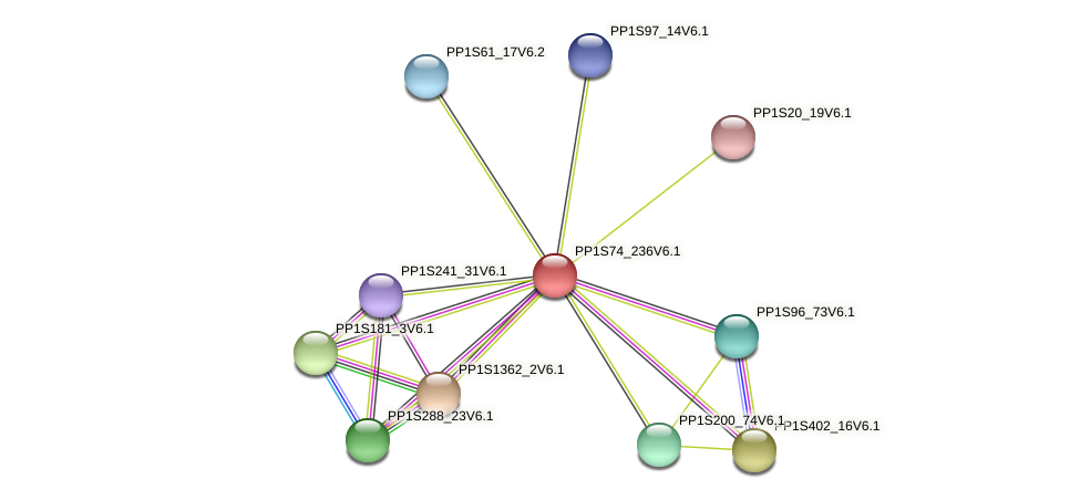 PP1S74_236V6.1 protein (Physcomitrella patens) - STRING interaction network