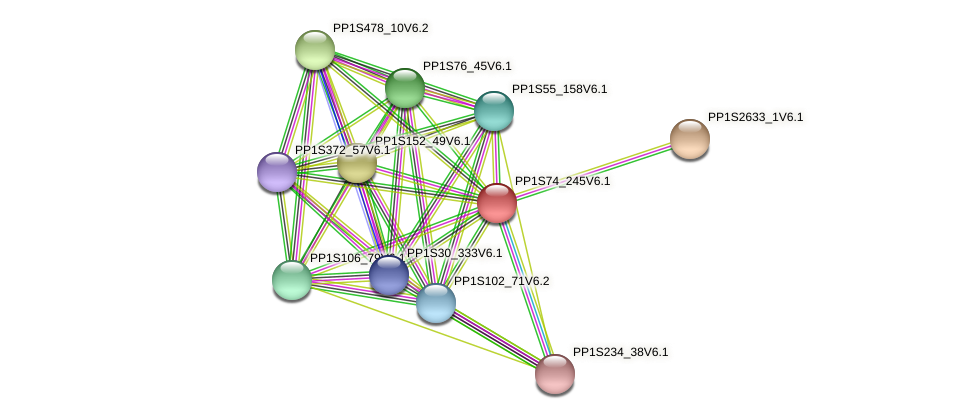 PP1S74_245V6.1 protein (Physcomitrella patens) - STRING interaction network