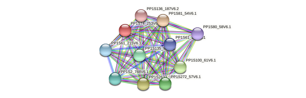 PP1S74_253V6.1 protein (Physcomitrella patens) - STRING interaction network